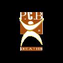 PCB copy