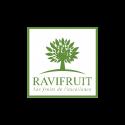 RAVIFRUIT copy